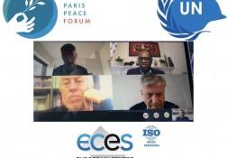 ECES strategic partnerships – PPF mentorship