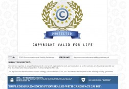 Communication & Visibility Guidelines Copyright