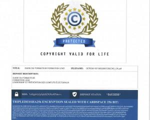 LEAD Copyright