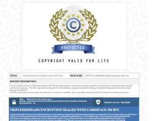 PEV Copyright